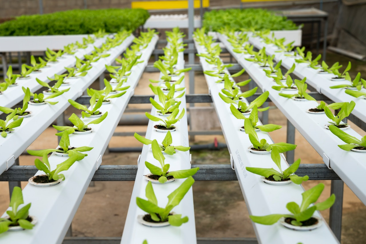 Why The Agriculture Industry Is Moving from Metal to Plastic Injection Molding